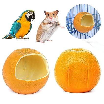 biteatey Comedero para pájaros Alimentador Fijo para Colgar ...