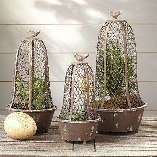 3 Piece Perch Wire Cloche Indoor Outdoor Terrarium Planter Set by Birch Lane