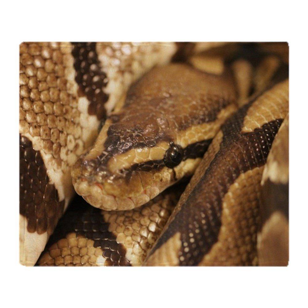 CafePress - Ball Python - Soft Fleece Throw Blanket, 50''x60'' Stadium Blanket