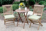 Outdoor Interiors 3-Piece Round Bistro Set, Sage Cushions Included, Brown and Sage Green For Sale