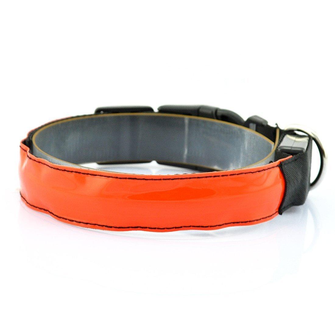 LED collier pour chien lumineux clignotant collier pour chien réfléchissant de sécurité nuit collier pour LovelyLifeAST