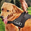 PYRUS K8 Dog Harness No-Pull Dog Leash Padded Pet Walking Harness Heavy Duty for Pet Dogs