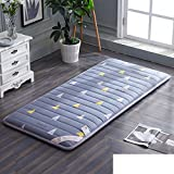 HYXL Plush Portable folding Floor mat Thicken Tatami mattress,Student [dorm room] Mattress Single bed Floor [nap] [pad] [cotton] Cushion Tatami mats Carpet-D 90x190cm(35x75inch)