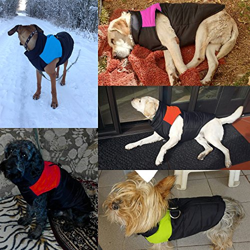 Didog Cold Weather Dog Warm Vest Jacket Coat,Pet Winter Clothes for Small Medium Large Dogs,8, Pink,4XL Size by Didog (Image #7)