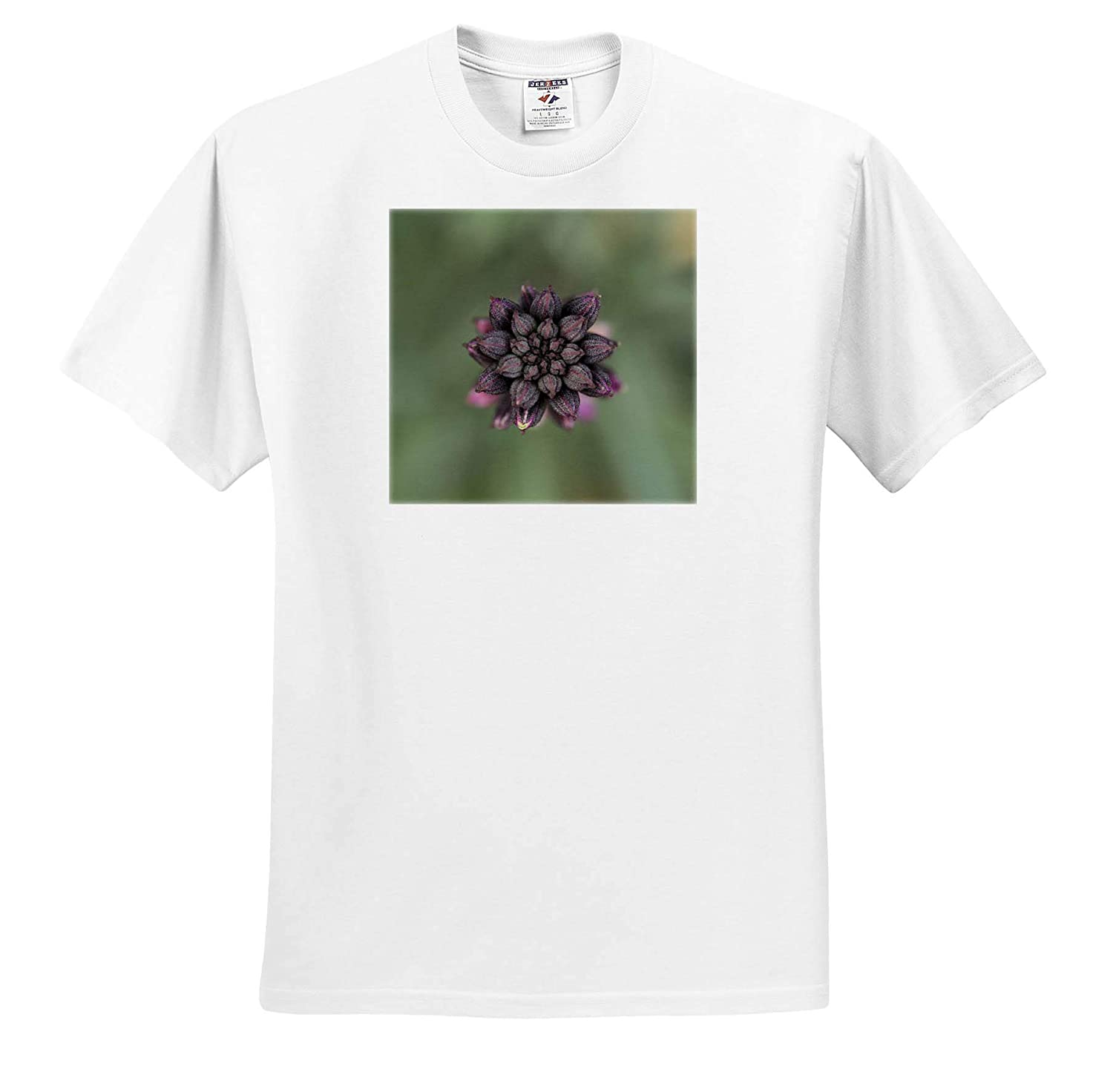 - T-Shirts Flowers Beautiful Macro Photograph of a Bowles Mauve WallFlower in The Winter 3dRose Stamp City