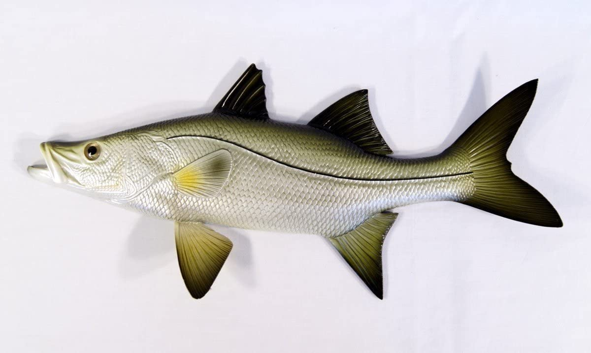 Replica Snook Ocean Coastal Fly Fishing Wall Decor