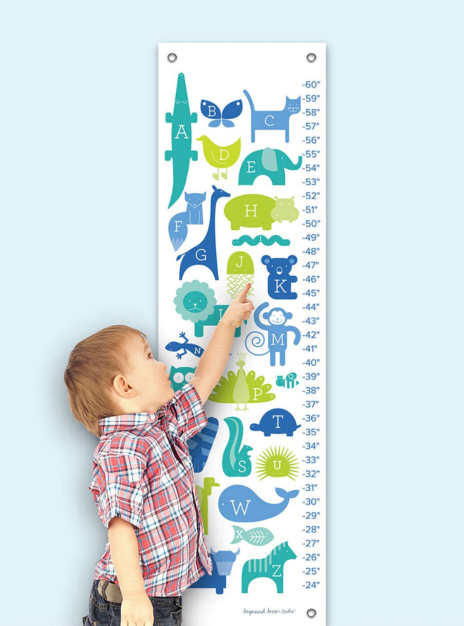Oopsy Daisy ABC Animalia Blues by Ampersand Design Studio Growth Charts 12 by 42-Inch