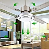 RainierLight Simple Stainless Steel Ceiling Fan and LED Light...