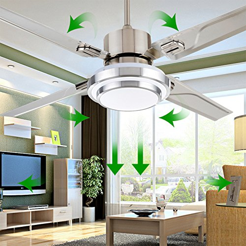 RainierLight Simple Stainless Steel Ceiling Fan and LED Light with Remote Control for Indoor 48-Inch(Silver)