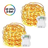 Fairy Lights Battery Operated, DecorNova 60 LED Starry Copper Wire String Lights with 3 AA Battery...