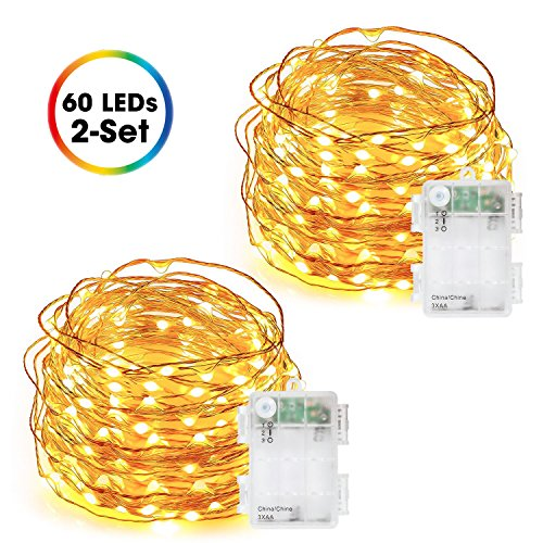 Fairy Lights Battery Operated, DecorNova 60 LED Starry Copper Wire String Lights with 3 AA Battery Case & Timer for Christmas Jar Bedroom Wedding Party Decorations, 9.8 Feet, Warm White (2 Set) (With String Timer Lights)