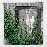59 x 59 Inches Mystic House Decor Fleece Throw Blanket Ivy on Wall with Aged Antique Empty Picture Frame as Window Creative Art Blanket Green Charcoal