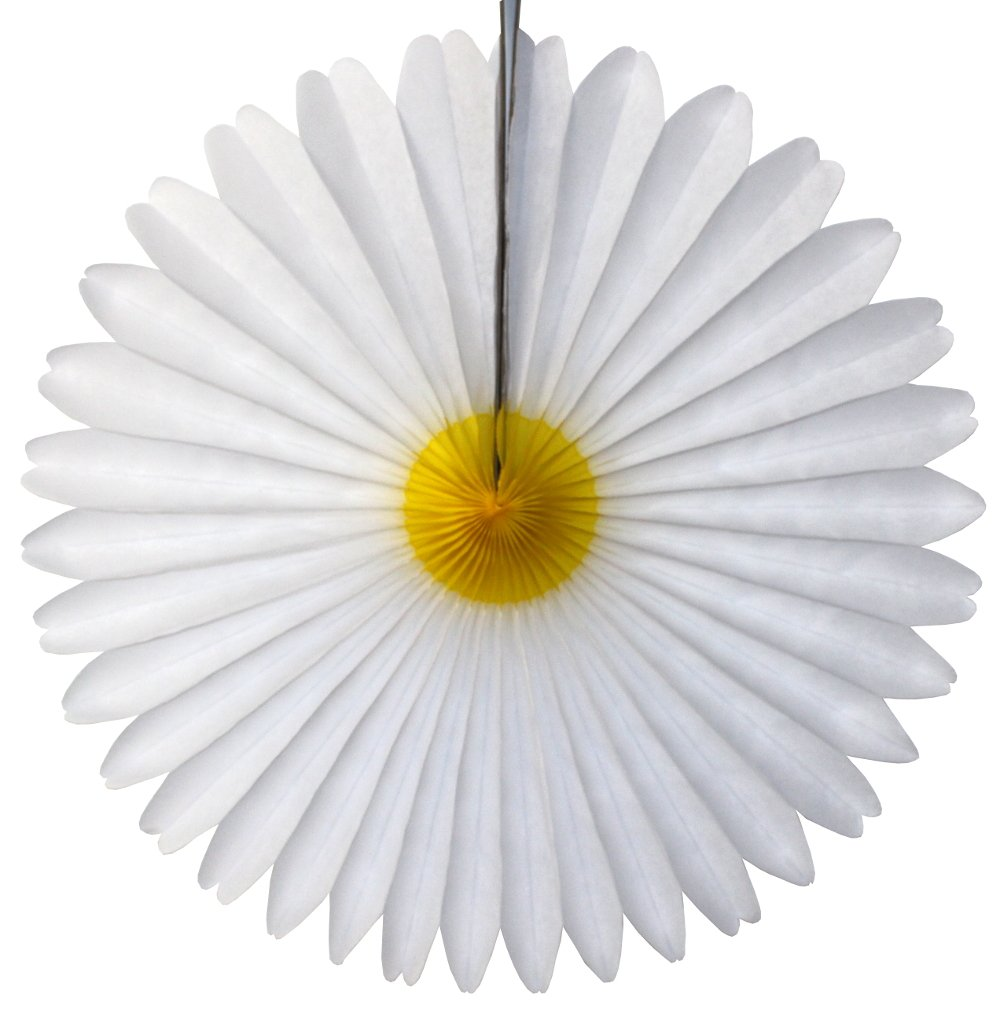 3-pack 13 Inch Tissue Paper Party Fans (Daisy Flower)