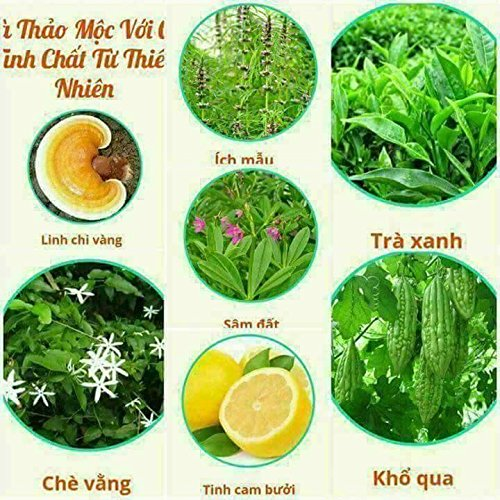 3 box (45 pack - Use 45 days) Trà Thảo Mộc giảm cân Vy & Tea -Vy & Tea - natural herbal tea help weight loss, sleep deep and purifying the body by Vy and Tea (Image #5)