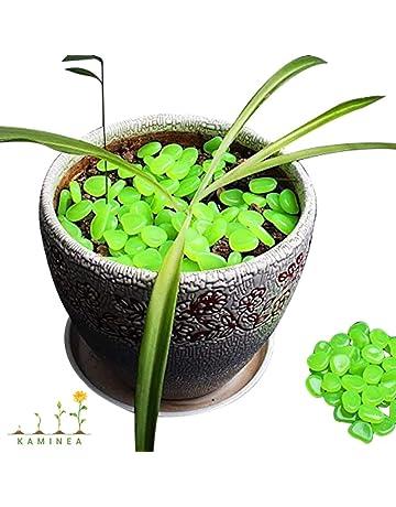100 Piedras Verde Fluorescentes | Gravilla Luminosa para Decoración Interior y Exterior | Accesorios para Estanques