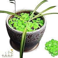 100 Piedras Verdes Decorativas | Piedras Luminosas