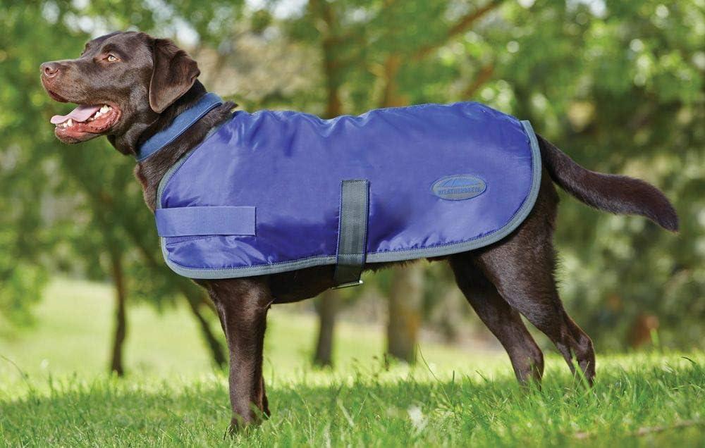 Weatherbeeta Windbreaker 420 Dog Coat, Windproof & Waterproof Jacket for Small Medium Large Dogs