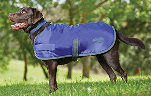 Weatherbeeta-Windbreaker-420-Dog-Coat,-Windproof-&-Waterproof-Jacket-for-Large-Dogs