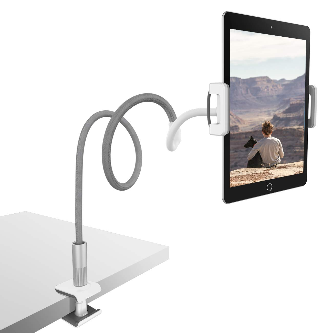 Sensational Lamicall Gooseneck Tablet Holder Universal Tablet Stand 360 Flexible Lazy Arm Holder Clamp Mount Bracket Bed For 4 7 10 5 Pad Air Pro Mini Interior Design Ideas Oteneahmetsinanyavuzinfo