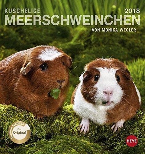 Meerschweinchen Postkartenkalender - Kalender 2018