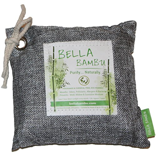Bamboo Charcoal Bag 100% Natural Air Freshener made our CampingForFoodies hand-selected list of 100+ Camping Stocking Stuffers For RV And Tent Campers!