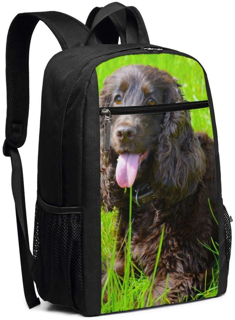 Irish Water Spaniel Multiuses Fation Backpacks School Bookbag Shoulder Bag Casual Daypack Laptop Bag 17 Inch Irish Water Spaniel 3