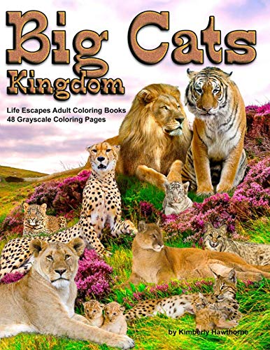 (Big Cats Kingdom Life Escapes Adult Coloring Book: 48 grayscale coloring pages of big wild cats like lions, tigers, cougars, leopards, cheetahs and ... cats like the caracal, ocelot cat and more)