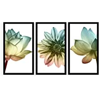 Kit 3 Quadros Decorativos Grandes Flores Coloridas com Fundo Branco Minimalista