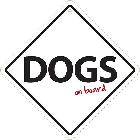 Magnet & Steel Perros a Bordo: Amazon.es: Productos para ...