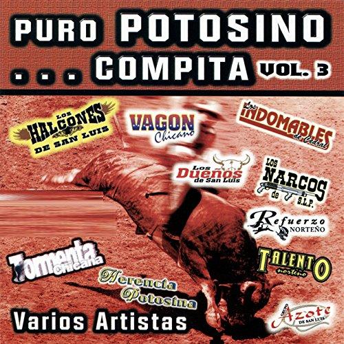 Puro Potosino... Compita, Vol. 3