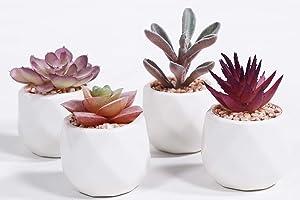 LITA Artificial Succulent Plants Fake Succulents Small Plants in White Ceramic Potted for Indoor Decor Office Room Desk Decoration4 Pots (ArtificialPlants- Purple-3)
