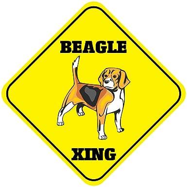 "15.5/"" x 15.5/"" plastic funny Beagle sign xing Crossings animal dog"
