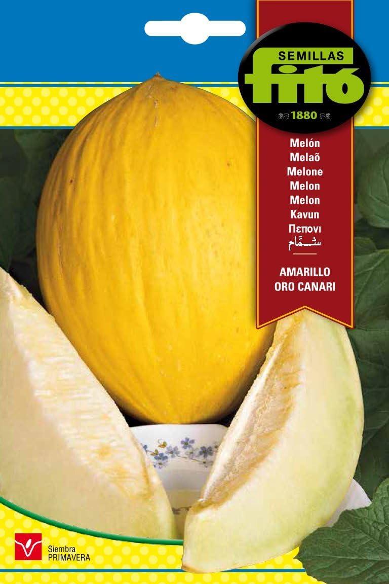 Semillas Fitó 214 - Semillas de Melón Amarillo Oro Canari: Amazon ...