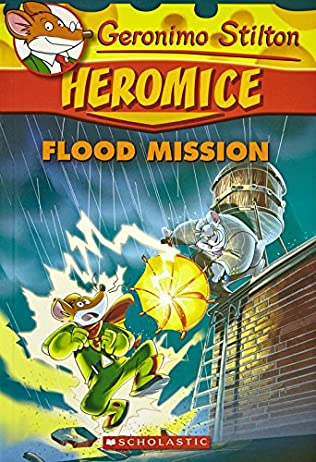 Book Cover Of Flood Mission