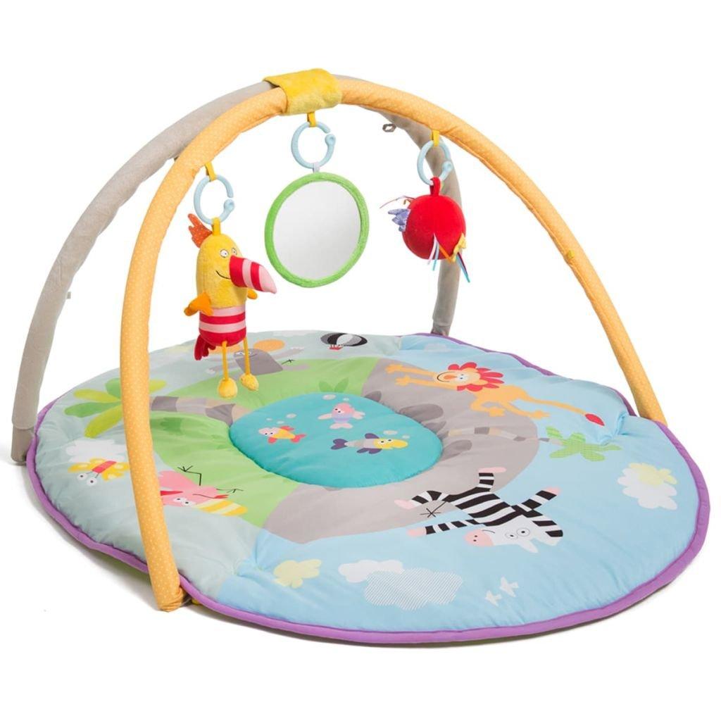 Amazon Com Taf Toys Take To Play Baby Gym Baby S All
