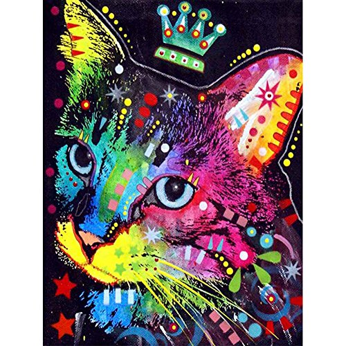5D Diamond Painting Kits Full Drill Diamond Embroidery by Sun Cling,12x16 Inches