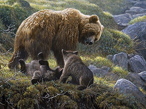400 Animals - Cobble Hill Grizzly and Cubs 400 Piece Bears 400 Piece Family Puzzle