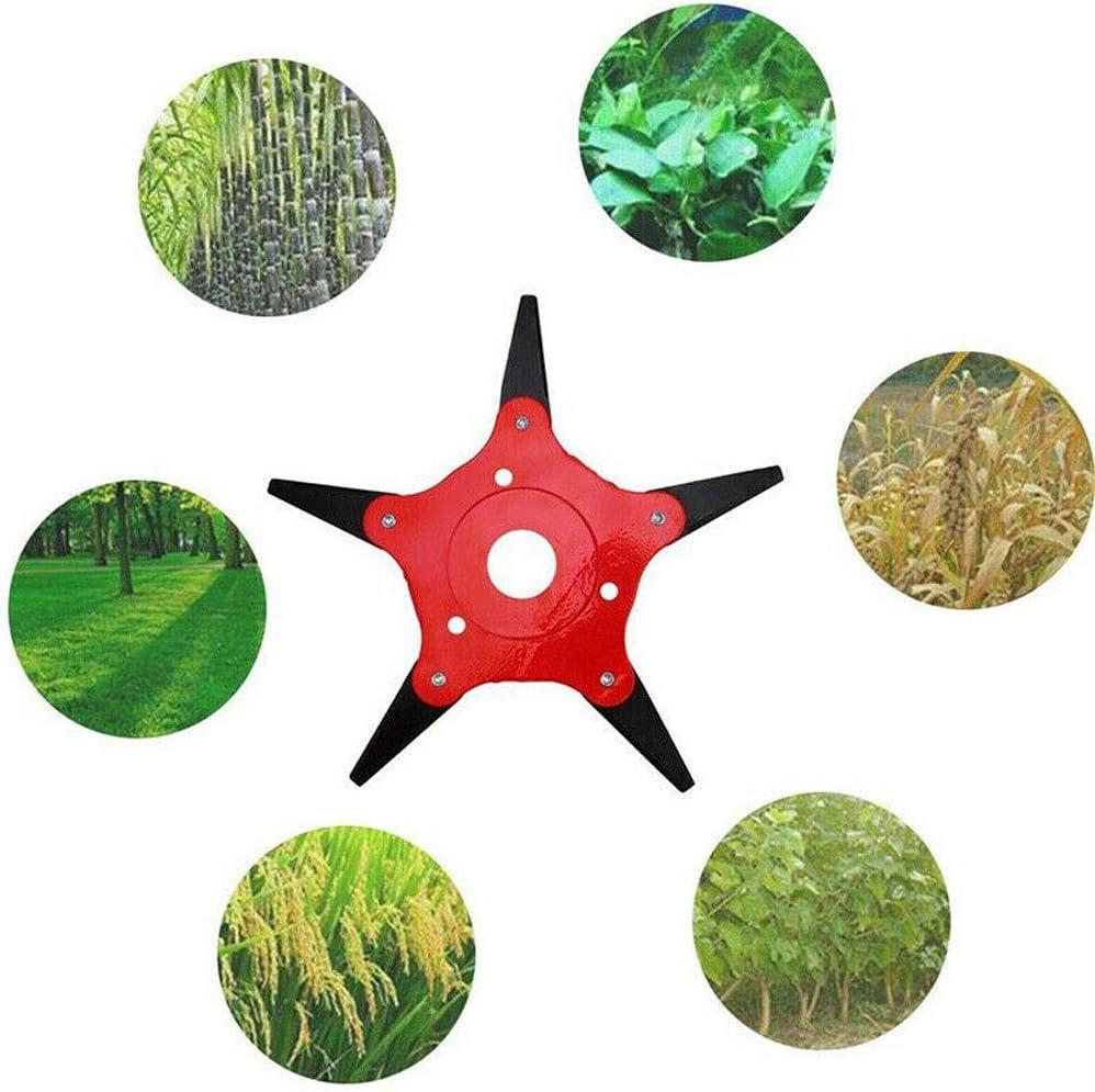NAYUKY Ext/érieur T/ête de Coupe Tondeuse /à Gazon Weed Eater d/ébroussailleuse Outil Tondeuse /à Gazon D/ésherbage Plateau Trimmer