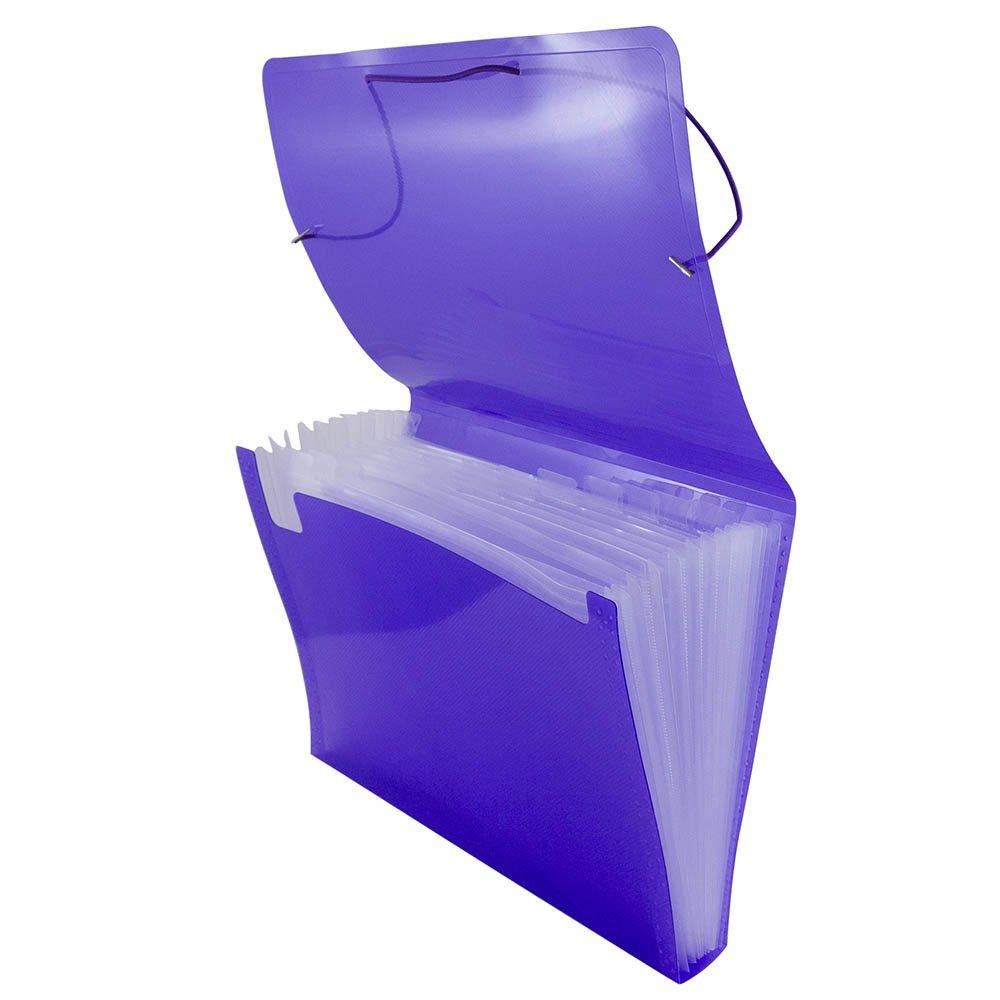 JAM Paper Accordion Folders - Plastic 13 Pocket Expanding File - Letter - 9'' x 13'' - Purple - 24/pack