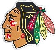 Fremont Die NHL Chicago Blackhawks Magnet, 8&