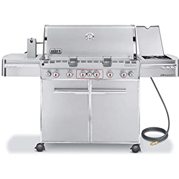 Natural 6-Burner Weber Gas Grill