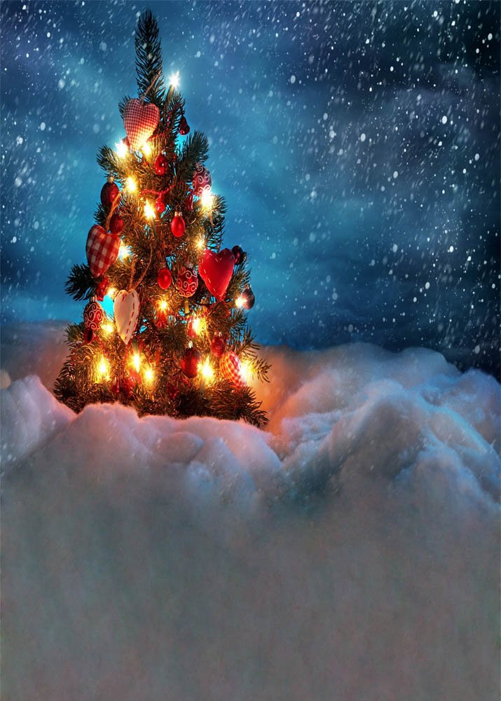 GladsBuy XMAS snow scene 5' x 7' Computer Printed Photography Backdrop Christmas Theme Background DGX-75