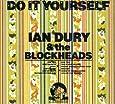 Do It Yourself (Dlx)