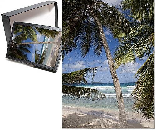 Bay Tortola British Virgin (Photo Jigsaw Puzzle of Beach, palm trees and surf in Long Bay, Tortola, British Virgin Islands)