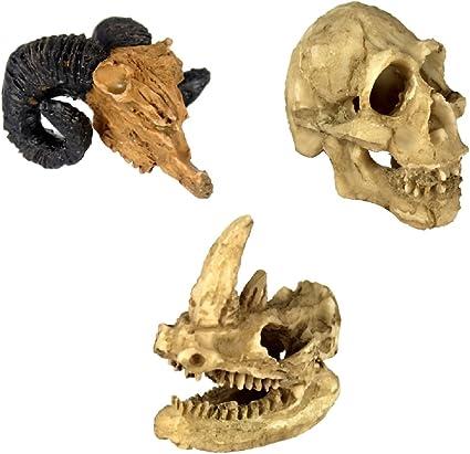 Aquarium Resin Sheep Head Skull Fish Tank Ornament Terrarium Reptile Decorations