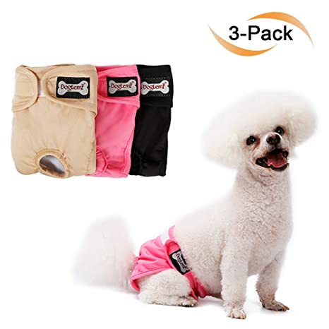 Pañales para perros reutilizables