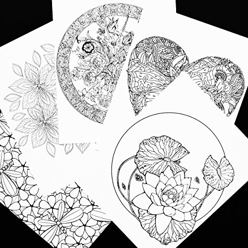 Sweet Gardens Adult Coloring Book - 30 Loose Leaf Pages to ...