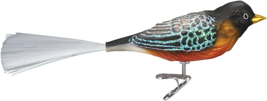 Old World Christmas Bird Watcher Collection Glass Blown Ornaments for Christmas Tree Robin