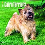 Cairn Terrier dogs Wall Calendar 2017 {jg} Best Holiday Gift Ideas - Great for mom, dad, sister, brother, grandparents, , grandchildren, grandma, gay, lgbtq.