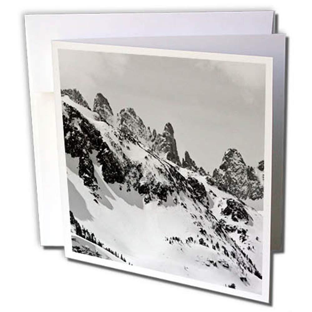 3dRosa 12 strapazierfähiges Karton Papier (GC 258979 _ 2) B079DGSMBN   Guter Markt